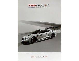 True Scale Miniatures TSMCAT2013 CATALOGO TRUE SCALE MINIATURE 2013 PAG.50 Modellino